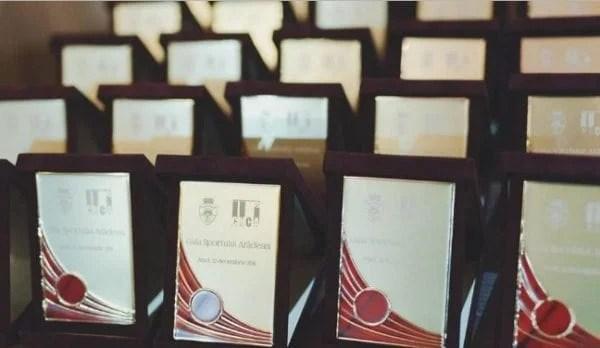 Ce spun laureații Galei Sportului Arădean 2016 și reprezentanții lor?