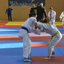 Aproape 500 de judoka - la startul Cupei CSM Arad, clubul gazdă a luat cele mai multe medalii