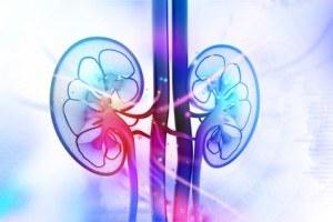 Lymphe im Lungenbereich