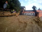 ToughMudder2017_94