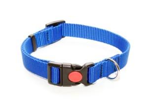 Ошейник из стропы 20 мм синий простой пластик с фиксатором