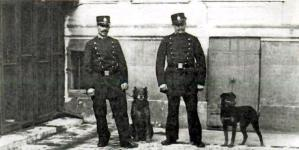First dogs of Paris police dog brigade
