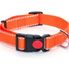 Ошейник из стропы 25 мм оранжевый рефлекс полоска пластик с фиксатором
