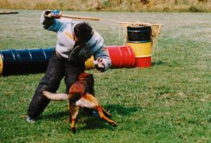 Elgos du Chemin des Plaines, призер международных чемпионатов по мондьорингу в 1990х гг.