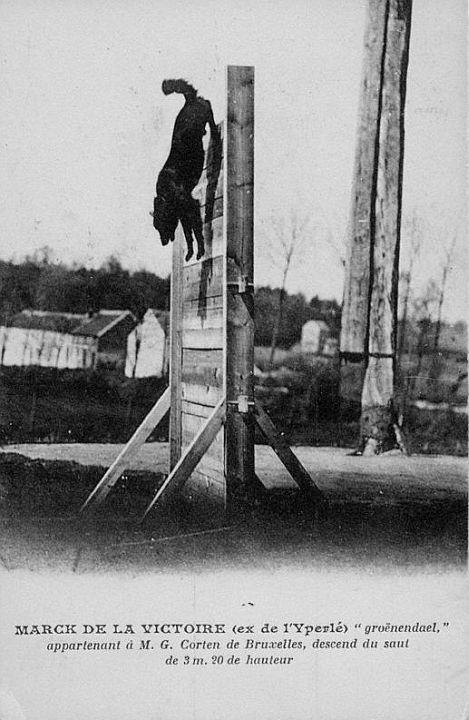 Marck de la Victoire (ex de l'Yperle) scaling the 3.20 meters palisade