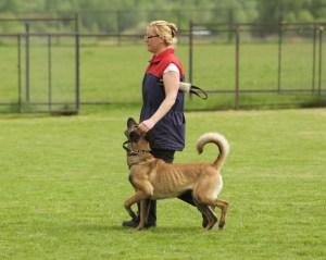 Валентина Горшкова и Kitty Running Wild