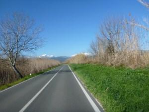Weg nach Sa Pobla - Mallorca