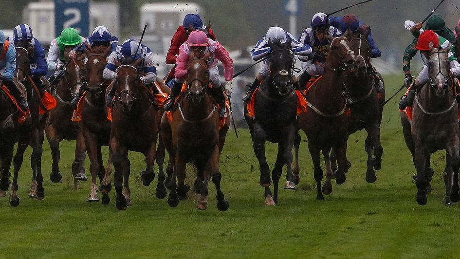 Withernsea - makes quick return to action at Goodwood