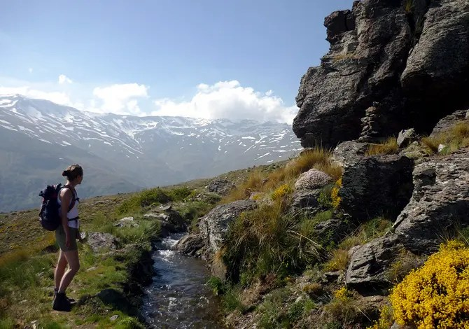 Sulayr Sierra Nevada
