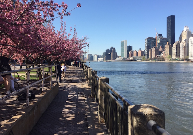 dove-correre-a-new-york-foto-martino-de-mori