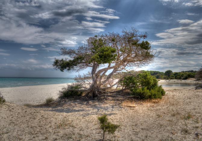 Spiagge libere selvagge in Italia