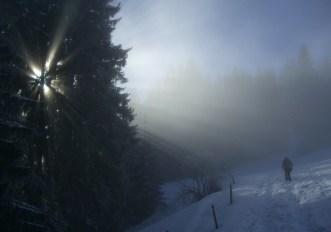 Passeggiate sulla neve in montagna: 9 pericoli da evitare