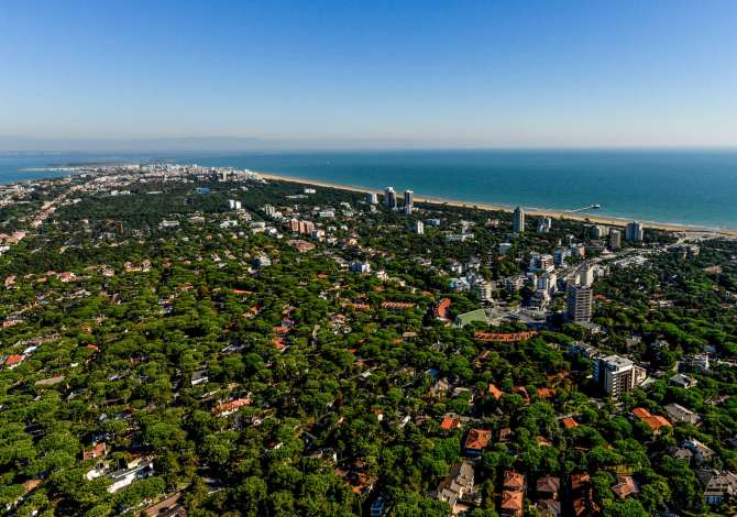 "Lignano Sabbiadoro ""Tree Cities of the World"" per l'impegno nei confronti degli alberi"