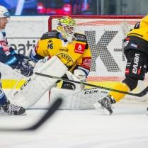 V pátek 1. prosince 2017 se v plzeňské Home Monitoring Aréně odehrál hokejový zápas 26. kola TipSport Extraligy ledního hokeje mezi celky HC Škoda Plzeň a HC Verva Litvínov. ROMAN TUROVSKÝ
