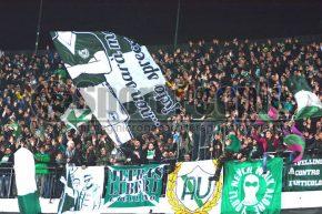 Avellino-Latina 1-1, Serie B 2013/14