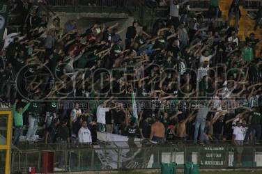 Ternana-Avellino 14-15 (37)