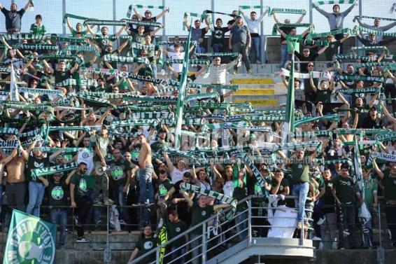 Livorno - Avellino 2015-16 0760