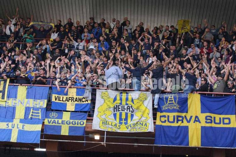 201516-Samp-Verona01