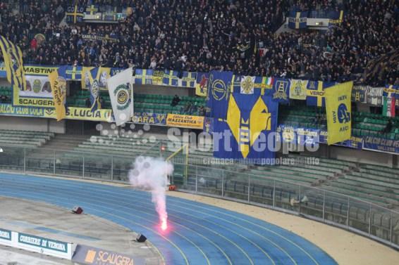 Verona-Bologna-Serie-A-2015-16-22