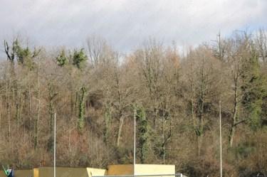 Sermoneta-Fiumicino-Coppa-Promozione-Lazio-2016-17-14
