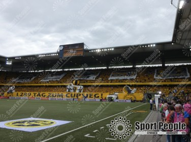 Zurigo-Young Boys (14)
