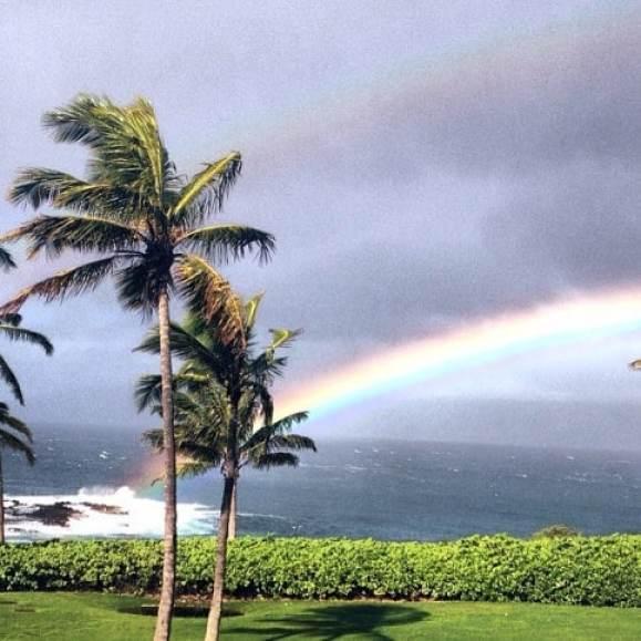 gretzky-hawaii