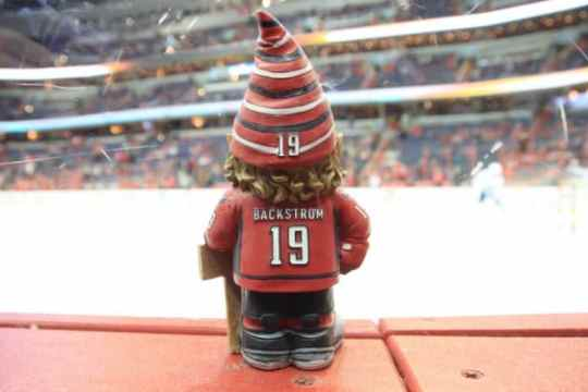 nicklas-backstrom-garden-gnome-4