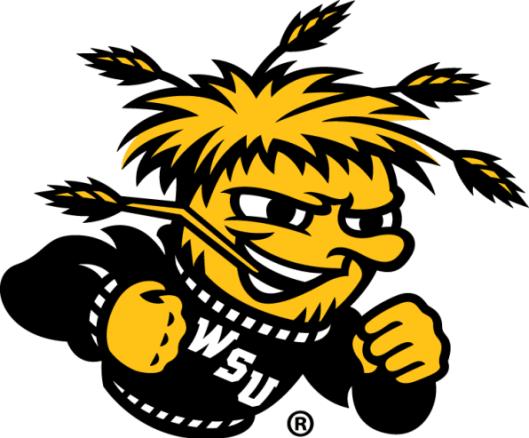 wu-shock-mascot