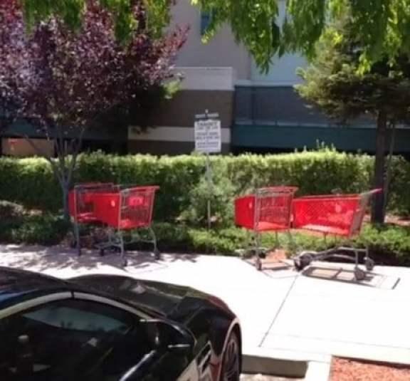 josh-reddick-shopping-carts