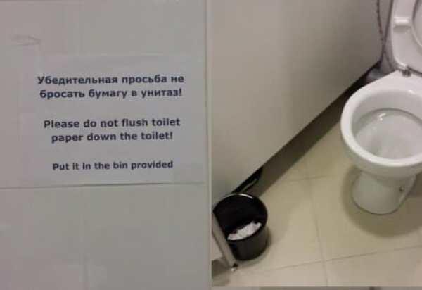 toilet-sochi-olympics