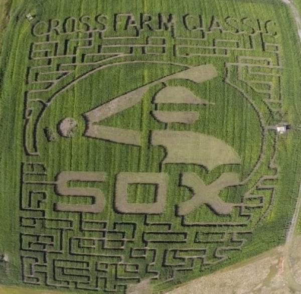 white-sox-corn-maze