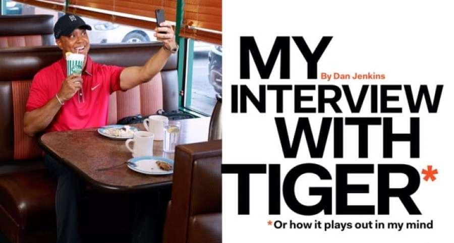 fake-interview-tiger