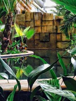 Tropical-Islands-Amazonia-Aussenbereich-Outdoor-3