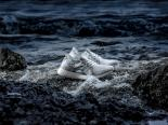 adidas-parley-sneaker-white-coral-ultraboost-x