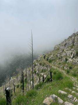 trailrunning-Pfad-der-Goetter-almalfi