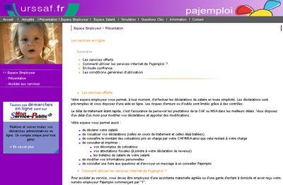Exemple Cv Nounou Domicile CV Anonyme
