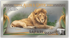 Pack Preview: 2020 Allen & Ginter Chrome