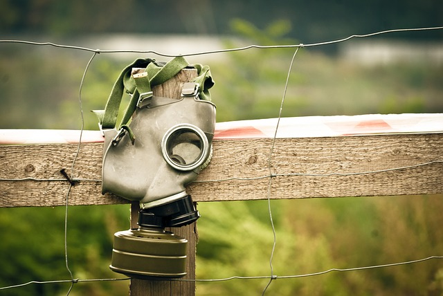 mask-467738_640