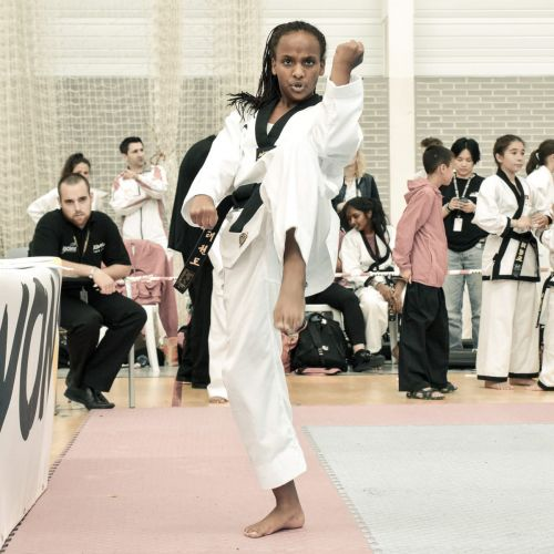 Martial-Arts-WC-2015-1191