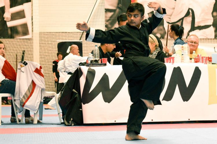 Martial-Arts-WC-2015-1664