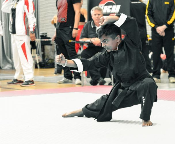 Martial-Arts-WC-2015-833