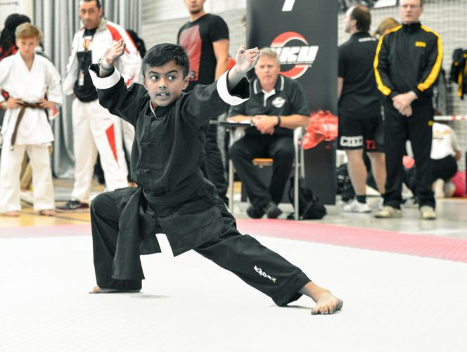 Martial-Arts-WC-2015-834