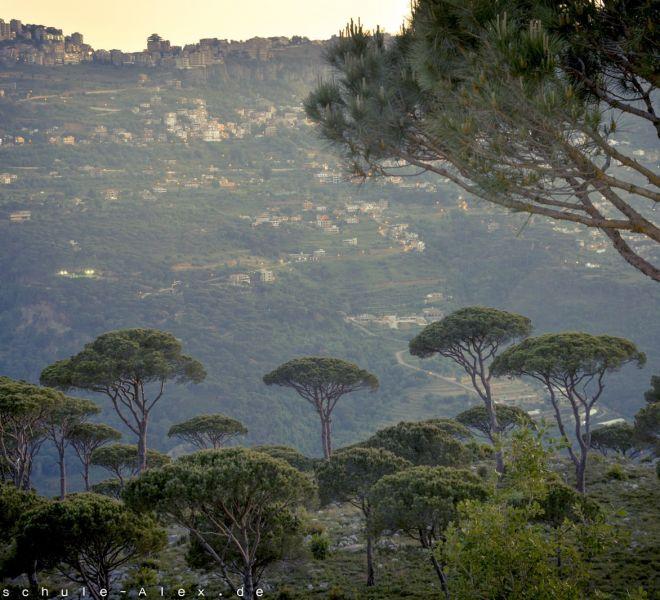 Libanon 2017 Mediterenean Open-2146