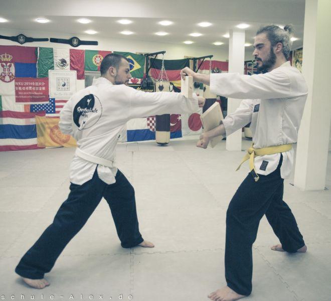 Taekwondopruefung Diamantis & Onur 2017-8256