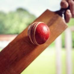 cricket player hitting ball PRTPGBK