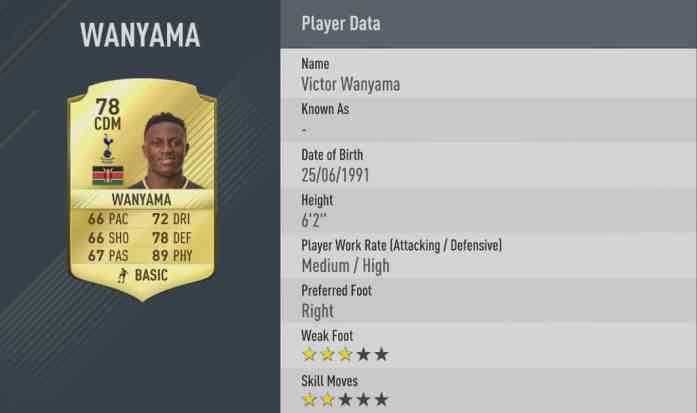 wanyama