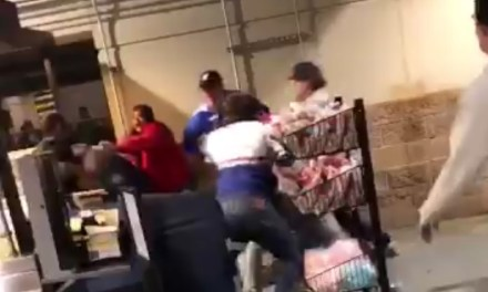 Cubs and Brewers Fans Involved in a Huge Brawl in Milwaukee