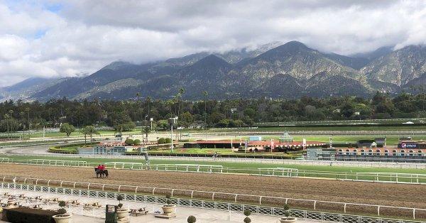 Third Horse in 9 days Dies at Santa Anita Track