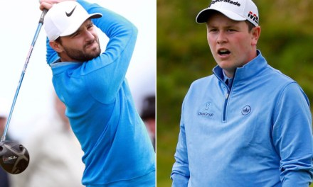 Golfers in War of Words After Caddie's Mom Nailed by Golf Ball