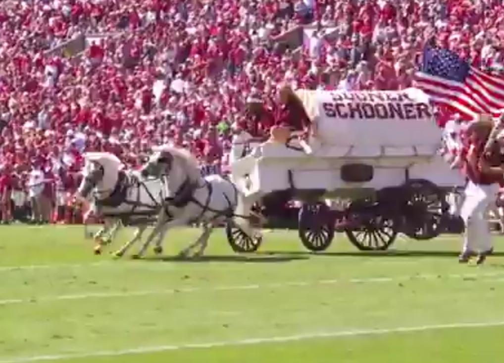 """Oklahoma's """"Sooner Schooner"""" Crashed at Halftime of Game Against West Virginia"""
